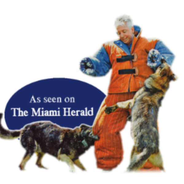 Richard Heinz, The Miami Dog Whisperer, dog training, dog training in miami, dog force 1, obedience training, best dog trainer, dog trainer doral, dogs for sale, trained dogs for sale, dog training boot camp, dog training, german shepherd for sale, golden retriever for sale, service dog training, service dog for sale, miami dog whisperer merchandise, easy dog training, fast dog training, positive dog training, shock collar dog training, best dog trainer, miami dog trainer, Fully trained dogs for sale, Fully Trained german Shepherd, fully trained puppy, potty training, obedience training, protection training, k9 training, hunting dog training, dog hunting dog training, dog force 1, gentle dog training, miami florida dog training, coral gables dog training, buy dog, dog for sale, pure breed dog, GSD training, Labrador dog for sale, fully trained labrador, potty trained puppy